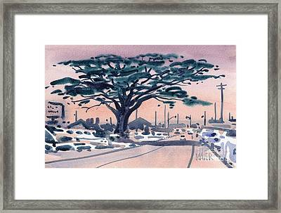 Big Cypress Half Moon Bay Framed Print by Donald Maier