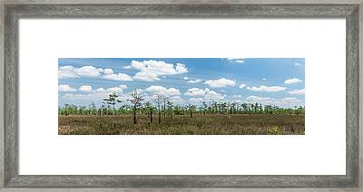 Framed Print featuring the photograph Big Cypress Marshes by Jon Glaser