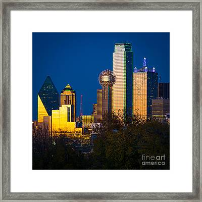 Big D Up Close Framed Print by Inge Johnsson