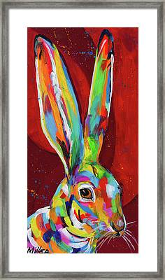 Big Ears Framed Print by Tracy Miller