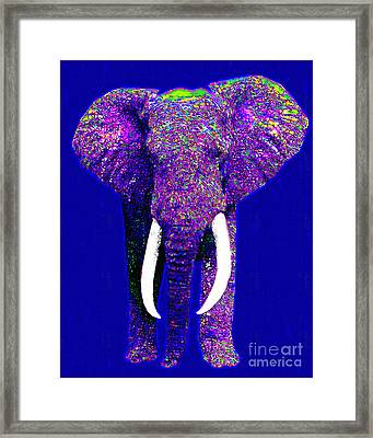 Big Elephant 20130201m118 Framed Print by Wingsdomain Art and Photography