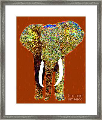 Big Elephant 20130201p20 Framed Print by Wingsdomain Art and Photography