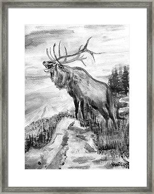 Big Elk Mountain - Black And White Framed Print by Scott D Van Osdol