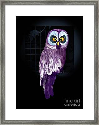 Big Eyed Owl Framed Print