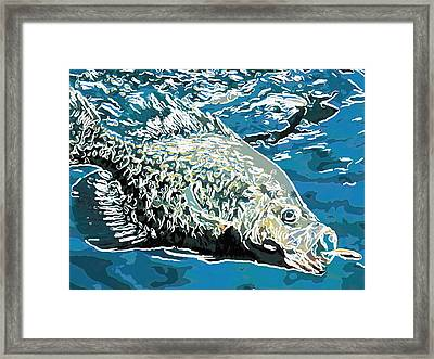 Big Fish Eats Little Fish Framed Print