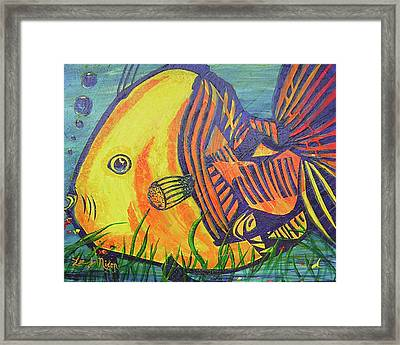 Big Fish In A Small Pond Framed Print by Lee Nixon