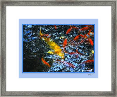Framed Print featuring the photograph Big Fish Little Fish by Linda Olsen