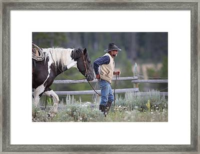 Big Horn Cowboy Framed Print