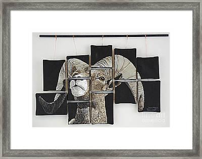 Big Horn Fragments Framed Print by Taunya Bruns