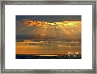 Framed Print featuring the photograph Big Island Rays by DJ Florek