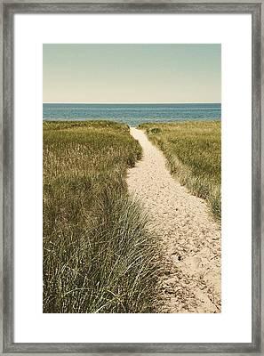 Big Lake Beach Path Framed Print by Michelle Calkins