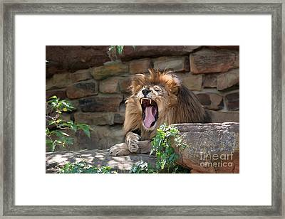 Big Mouth Framed Print