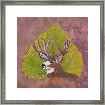 Big Mule Deer Buck Framed Print