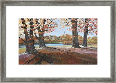Big Oaks In Fall Framed Print by Werner Pipkorn
