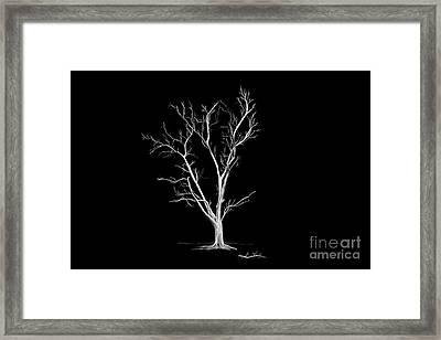 Big Old Leafless Tree Framed Print