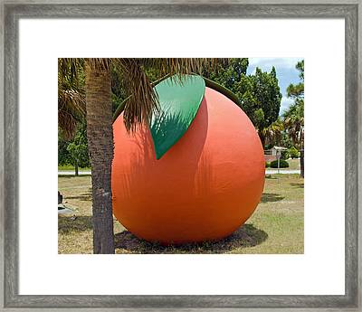 Big Orange At Melbourne On The East Coast Of Florida Framed Print