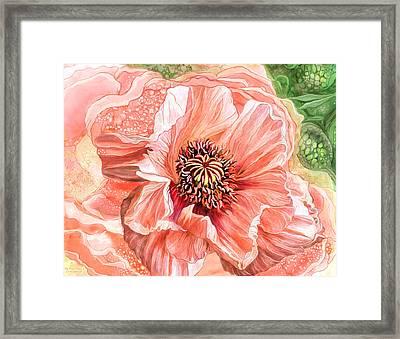 Big Peach Poppy 2 Framed Print by Carol Cavalaris