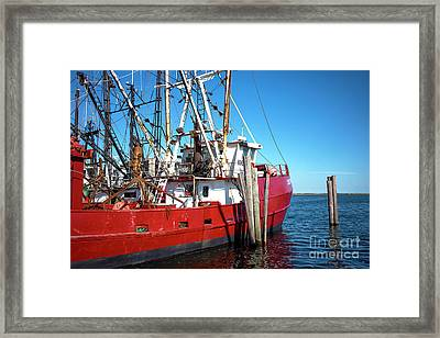 Framed Print featuring the photograph Big Red In Barnegat Bay by John Rizzuto