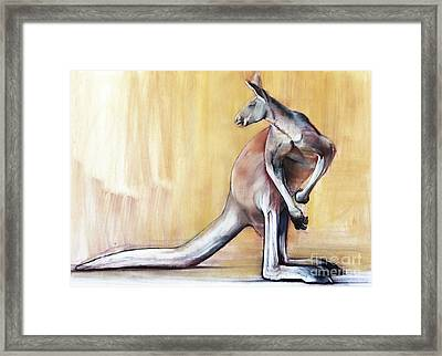 Big Red  Kangaroo Framed Print by Mark Adlington