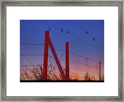 Big Red - Nebraska Framed Print by Nikolyn McDonald
