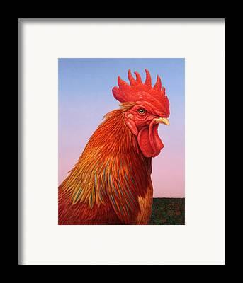 Rooster Framed Prints