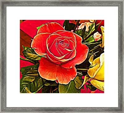 Big Red Rose Framed Print