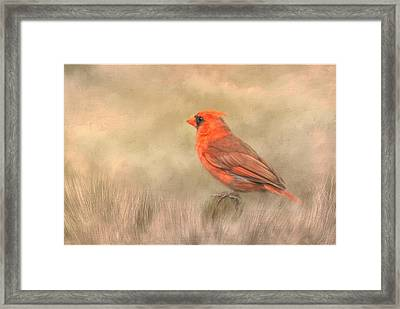 Framed Print featuring the mixed media Big Red by Steven Richardson