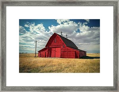 Big Red Framed Print by Todd Klassy