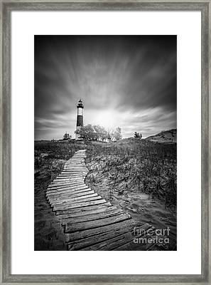 Big Sable Black And White Framed Print by Todd Bielby