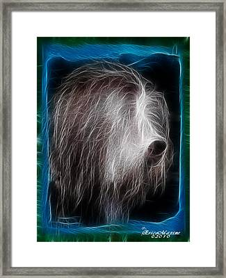 Framed Print featuring the photograph Big Shaggy Dog by EricaMaxine  Price