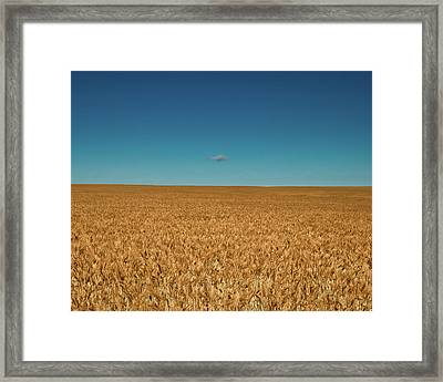 Big Sky Montana Framed Print