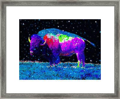 Big Snow Buffalo Framed Print by David Lee Thompson