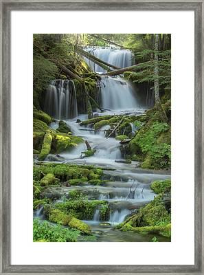Big Spring Creek Framed Print