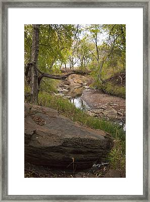 Big Stone Creek Framed Print by Ricky Dean