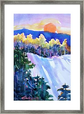 Big Sunshine Cold November Framed Print by Therese Fowler-Bailey
