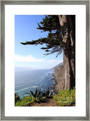 Big Sur Coastline Framed Print by Linda Woods