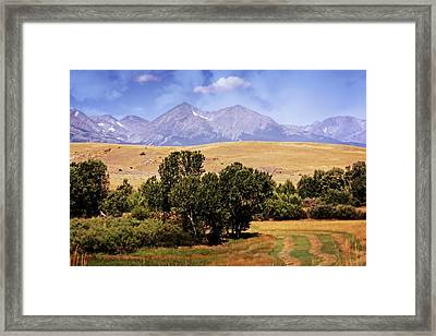 Big Timber Canyon 2 Framed Print by Marty Koch