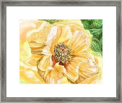 Big Yellow Poppy Framed Print by Carol Cavalaris