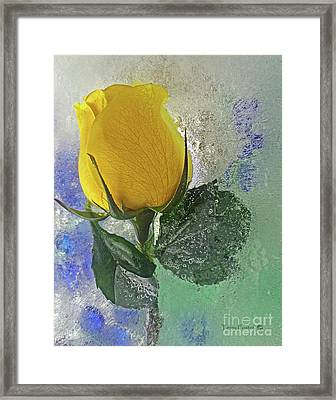 Big Yellow Framed Print by Terry Foster