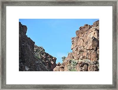 Bigbend Bighorn Framed Print by Thor Sigstedt