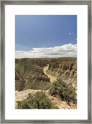 Bighorn River At Devil's Canyon Framed Print by Niala Branson
