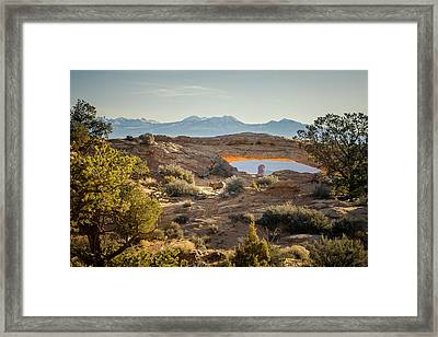 Bighorn Sheep And Mesa Arch Framed Print