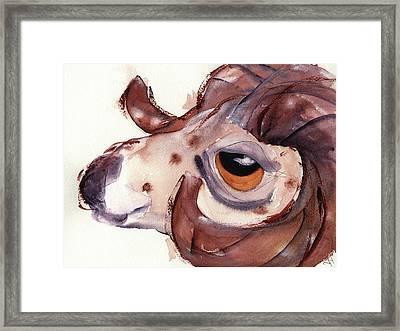 Bighorn Sheep Framed Print by Dawn Derman