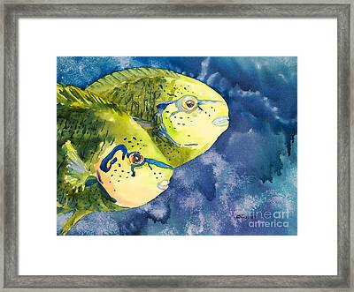 Bignose Unicornfish Framed Print