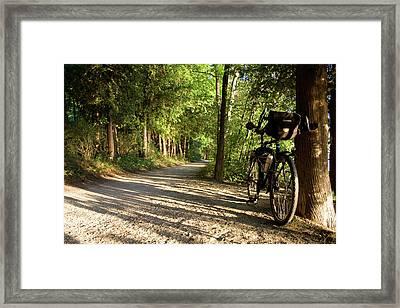 Bike Rest Framed Print by Dylan Punke