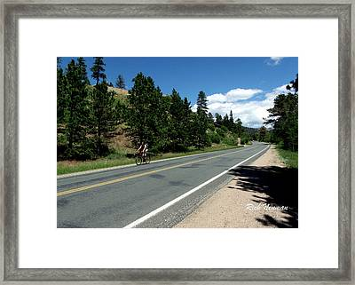 Biking Estes Framed Print