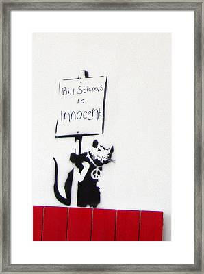 Bill Stickers Is Innocent Framed Print by Amy Bernays