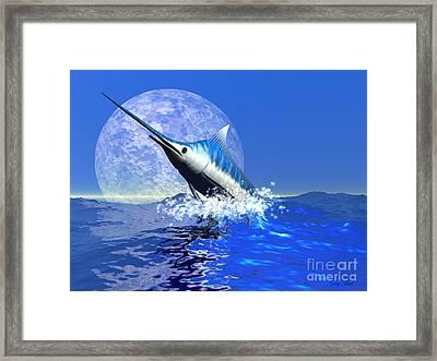 Billfish  Framed Print by Corey Ford