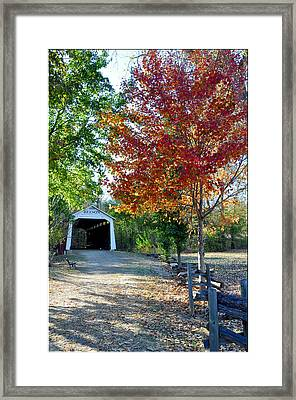Billie Creek  Framed Print by Brittany H