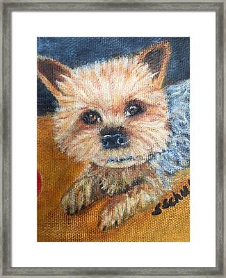 Framed Print featuring the painting Billy by Sharon Schultz